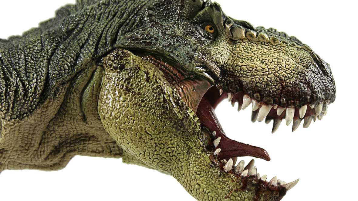 Ciencia al cubo - Dinoscience, una app española sobre dinosaurios - 23/11/14 - Escuchar ahora