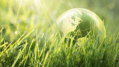 Gente despierta - La importancia de la educación ambiental - Escuchar ahora