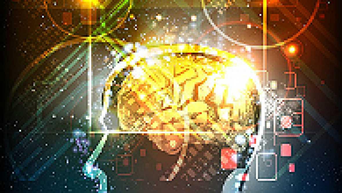 Ciencia al cubo - ¿El tamaño del cerebro importa? - 19/04/15 - Escuchar ahora