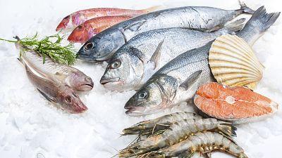 España vuelta y vuelta - Nace el 'personal fish trainer' - Escuchar ahora