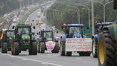 Las mañanas de RNE - La Comisión Europea concede 500 millones de euros de ayuda a los ganaderos - Escuchar ahora