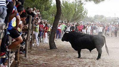 Radio 5 Actualidad - Tordesillas celebra el Toro de la Vega rodeado de polémica - Escuchar ahora