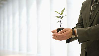 Sostenible y renovable en Radio 5 - Objetivos de desarrollo sostenible - Escuchar ahora