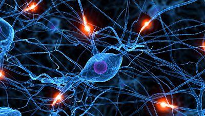España vuelta y vuelta - La neurociencia aplicada a la publicidad o a la criminología - Escuchar ahora