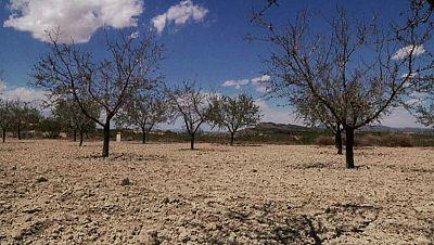 Radio 5 Actualidad - El precio del agua desalada, a la mitad para hacer frente a la sequía de la cuenca del Segura - Escuchar ahora