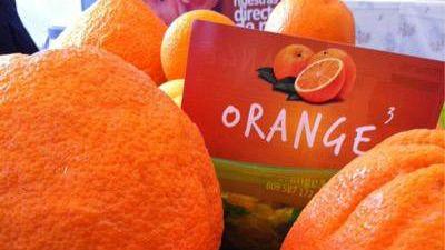 Marca España - Orange3: un caso ejemplar de pyme que triunfa en las redes sociales - escuchar ahora
