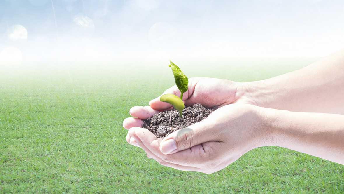 Marca España - La biotecnología agrícola española referente mundial - 07/01/16 - escuchar ahora