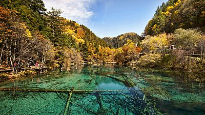 N�madas - Sichuan, poderosa naturaleza - 24/01/16 - escuchar ahora