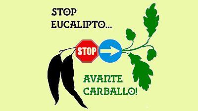 Artesfera - Stop eucalipto, avante carballo! - 12/02/16 - Escuchar ahora