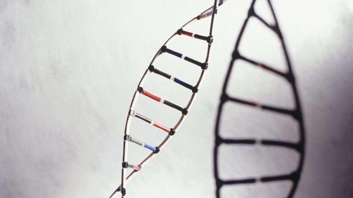 A hombros de gigantes - Ya es posible la sustitución de genes para curar una enfermedad - 22/02/16 - Escuchar ahora