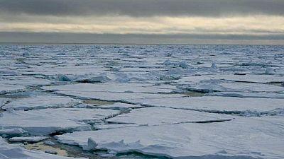 Entre paréntesis - El Ártico pierde una capa de hielo en inverno del doble del tamaño de Texas - Escuchar ahora