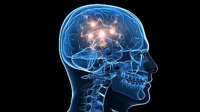 El canto del grillo - 'Cerebroflexia': ¿Cómo ejercitar el cerebro? - Escuchar ahora