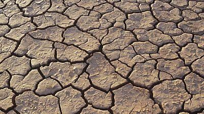Entre paréntesis - El 20% del territorio español se ha desertificado y el 1% se está degradando - Escuchar ahora
