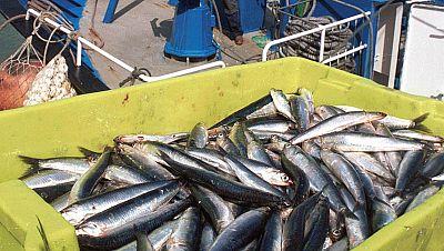 Agro 5 - La pesca es sostenible - 18/6/16 - Escuchar ahora