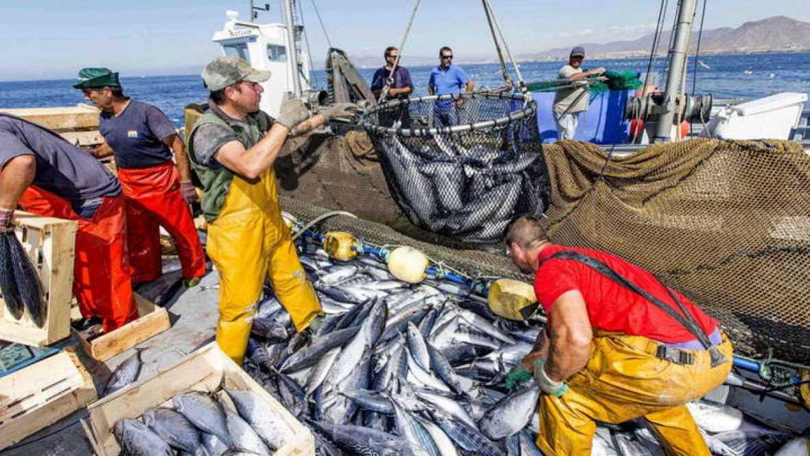 Españoles en la mar - Peticiones del sector pesquero al futuro Gobierno - 29/06/16 - escuchar ahora