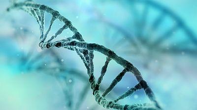 Entre paréntesis - Un programa español de identidad genética para evitar las adopciones ilegales - Escuchar ahora