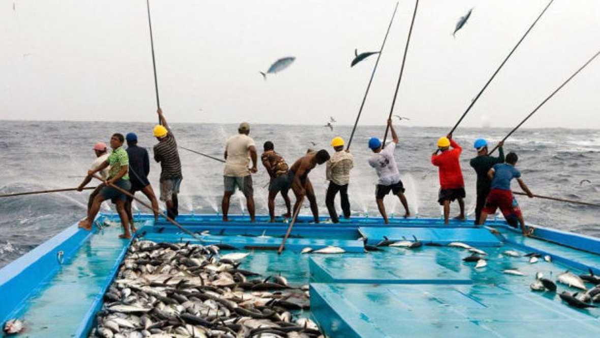 Españoles en la mar - Cierre anticipado de la pesquería del bonito - escuchar ahora