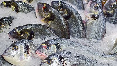 Esto me suena. Las tardes del Ciudadano García - Guía on line para fomenar el consumo responsable de pescado - Escuchar ahora