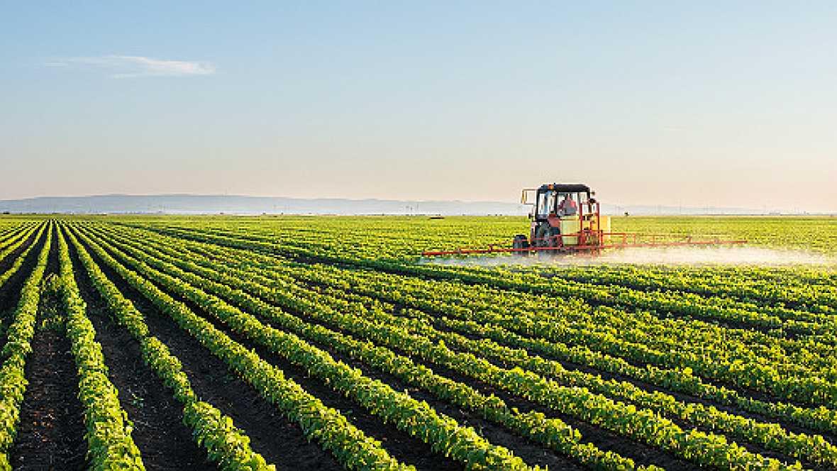 Europa abierta en Radio 5 - Un Erasmus agrícola para garantizar el futuro del campo europeo - 26/10/16 - Escuchar ahora
