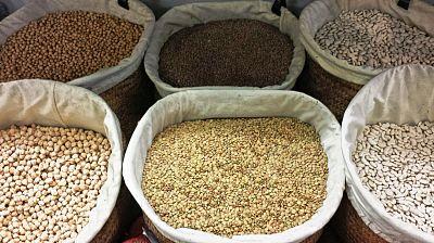 Agro5 - Legumbres e I+D+I para una agricultura sostenible -31/12/16 - Escuchar ahora