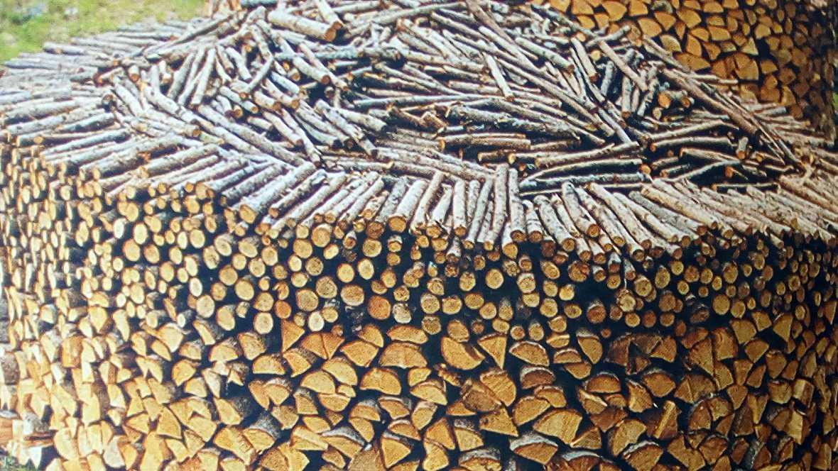 Vida verde - El libro de la madera. Una vida en los bosques - 07/01/17 - Escuchar ahora