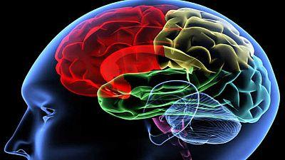 De lo más natural - El cerebro de las mujeres cambia durante el embarazo - Escuchar ahora