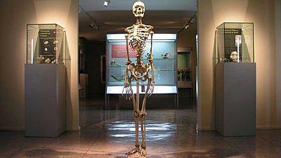 Esto me suena. Las tardes del Ciudadano García - Un paseo por el Museo de Antropología Forense de la Universidad Complutense de Madrid - Escuchar ahora