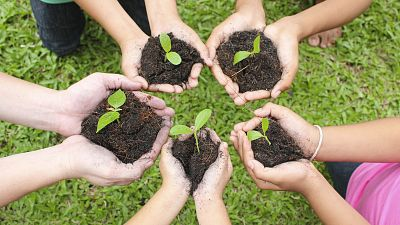 Vida verde - Terapia hortícola, también aquí - 18/02/17 - escuchar ahora