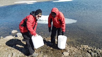 Españoles en la mar - Contaminantes en la Antártida - escuchar ahora