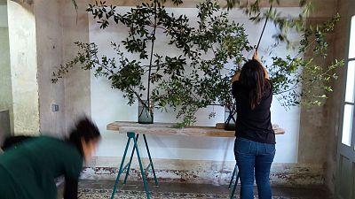 Vida verda - Estudio Sauvage. Floristes Salvatges
