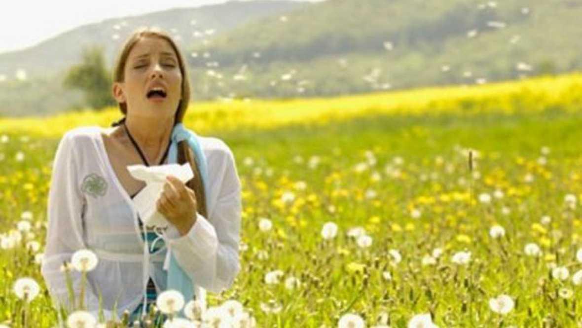 No es un día cualquiera - Alergia - Escuchar ahora