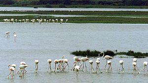 Parques Nacionales Españoles, red de biodiversidad