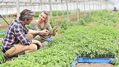 Marca España - La aceleradora Orizont busca nuevas empresas innovadoras en agroalimentación - 29/03/17 - escuchar ahora