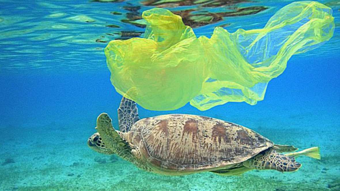 Entre paréntesis - Los plásticos invaden los océanos - Escuchar ahora