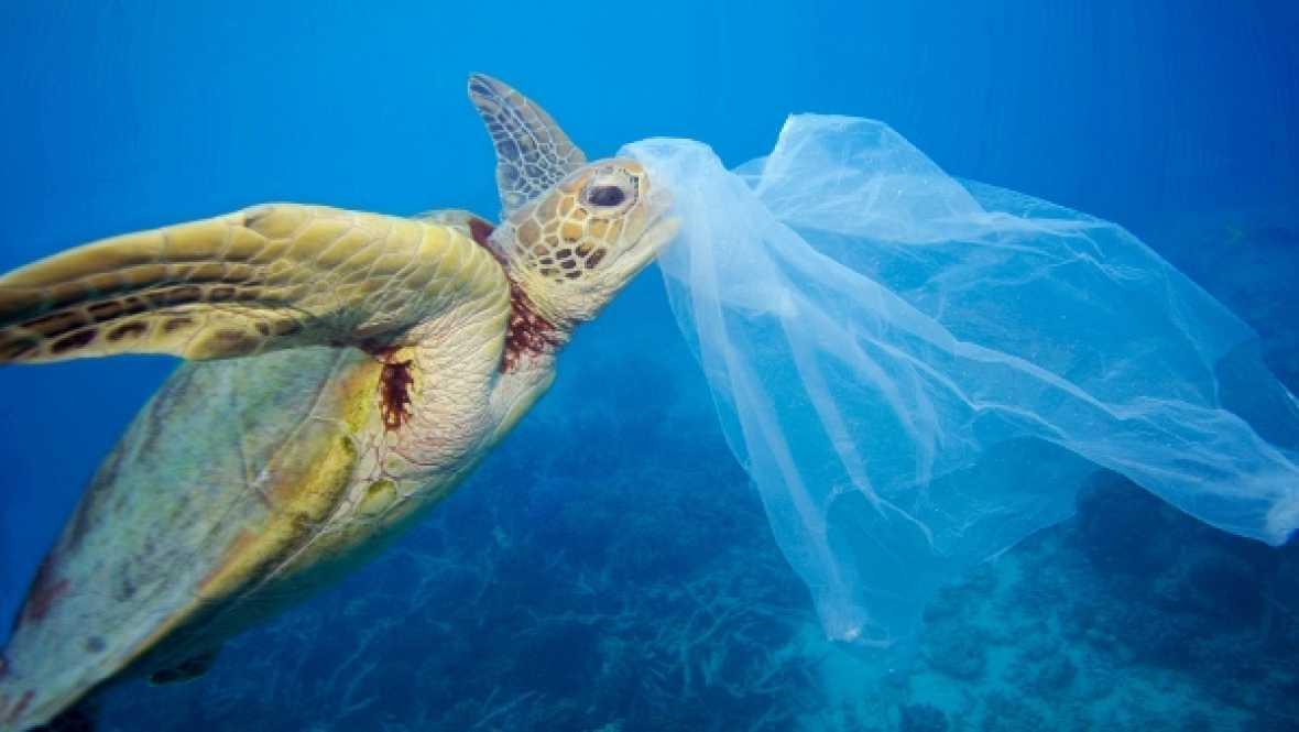 Españoles en la mar - ¿Más plásticos que peces en el mar en 2050? - 20/04/17 - escuchar ahora