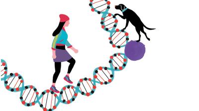 El canto del grillo - La dictadura de los genes - Escuchar ahora
