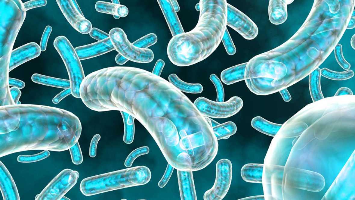 A hombros de gigantes - Los virus que nos acechan - 05/06/17 - Escuchar ahora