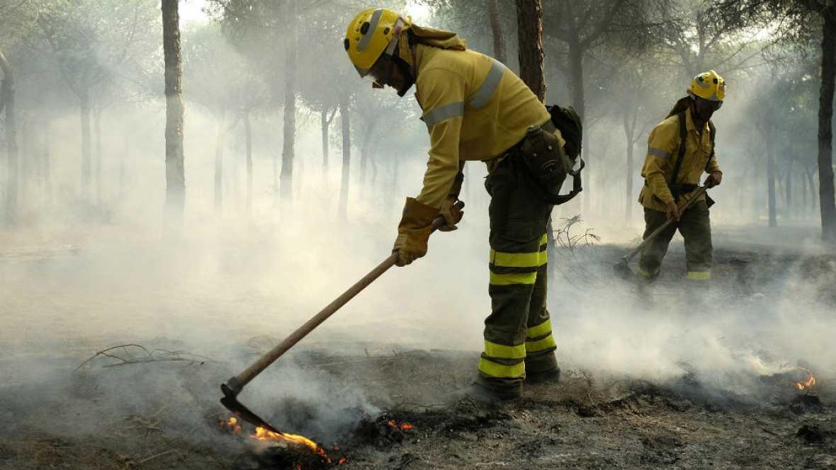 Diario de las 2 - El Seprona investiga el origen del incendio de Moguer - Escuchar ahora