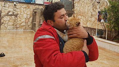 Travesías - El gatero de Alepo - 30/06/17 - escuchar ahora