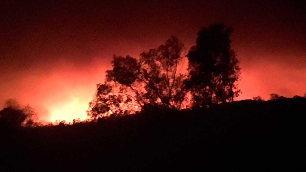 El bosque habitado - Sueña Doñana #NomásincendiosR3. Con José Mª Galán - 02/07/17 - escuchar ahora