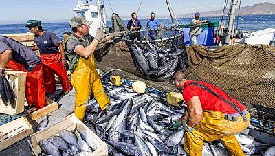 Españoles en la mar - El sector pesquero europeo reclama un fondo europeo específico para la pesca - 08/09/17 - escuchar ahora