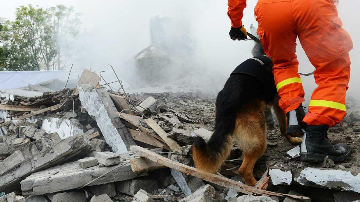 Fauna cercana - Perros de rescate - 14/09/17 - Escuchar ahora