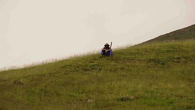 Vida verda - El Perdut de Christophe Farnarier