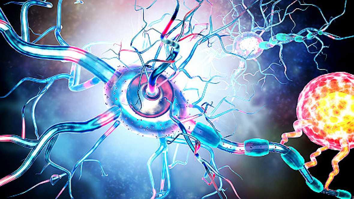 Miofisio - Conoce la esclerosis múltiple - 12/10/17 - Escuchar ahora