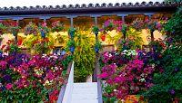 Artesfera - I edición de Flora: el Festival Internacional de las Flores de Córdoba - 19/10/17 - escuchar ahora