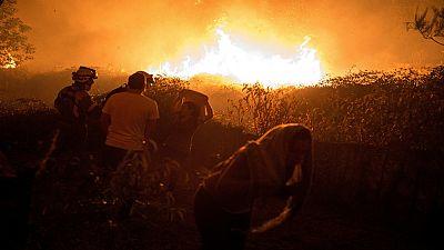 De lo más natural - Fuego: ¿y después qué? - 22/10/17 - escuchar ahora