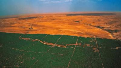 """Entre paréntesis - Una 'gran muralla verde"""" en Africa - Escuchar ahora"""