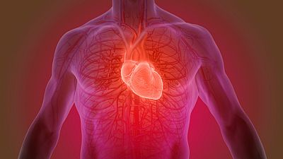 A su salud - Estudio sobre las listas de espera de trasplante cardíaco - 13/12/17 - Escuchar ahora