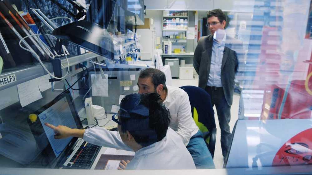 Pere Estupinyà, en el laboratorio de investigación genética