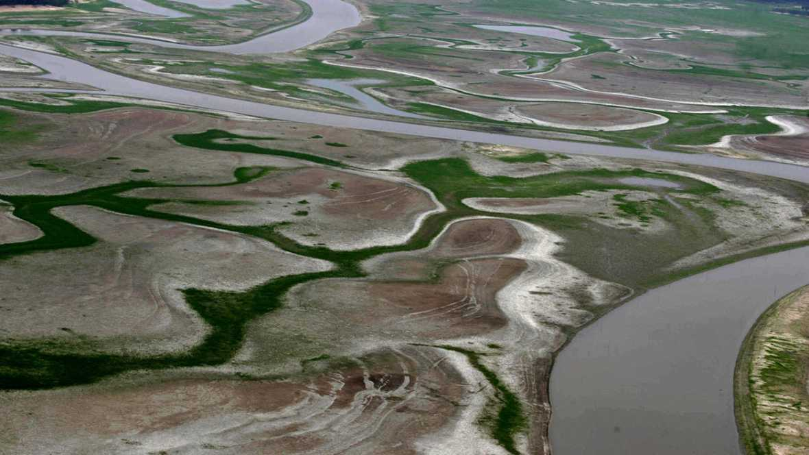 El arrecife ha sido hallado en el delta amazónico.